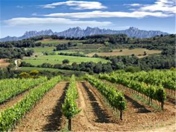 Disabled travel to Catalonia, Barcelona & Penedes