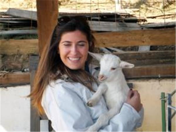 Goat herding experience in the Pyrenees of Girona
