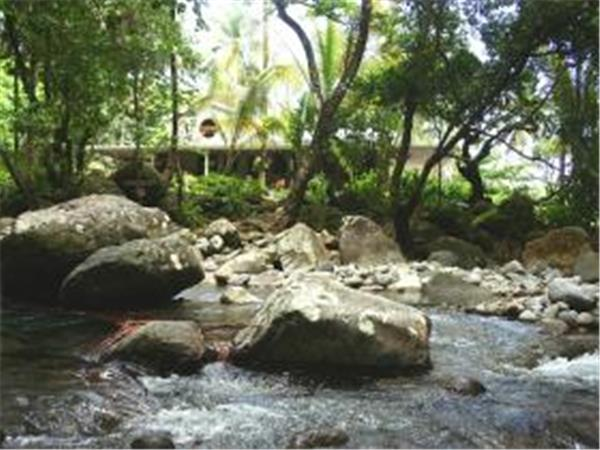 Riverside holiday accommodation in Dominica