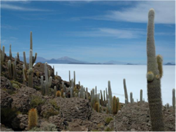 Peru and Bolivia holiday, Machu Picchu and Salt Flats