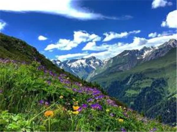 Mindfulness & nature holiday in Austria