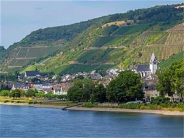 Rhine Valley short break, wine and world heritage