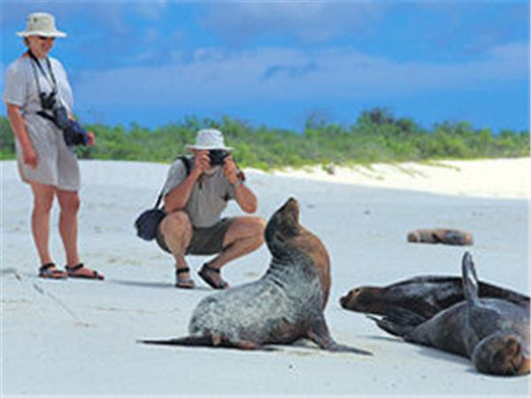 Ecuador highlands tour & Galapagos cruise