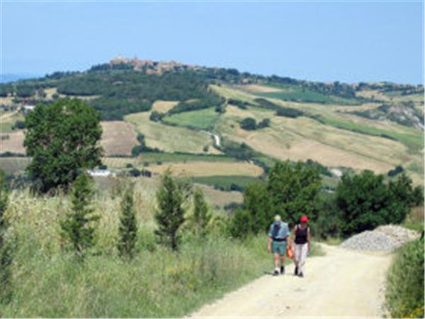 Guided walking holiday in rural Tuscany, Italy