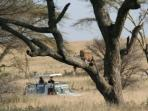 Tanzania luxury camping safari