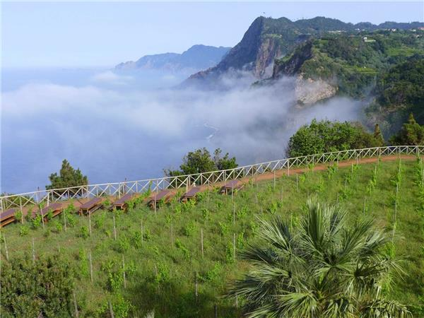 Madeira walking holiday, self guided