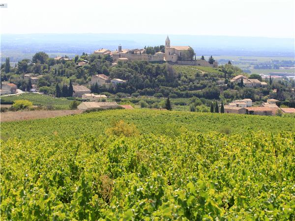 France cycling tour in Provence, Vaucluse Vineyards
