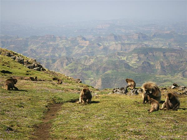 Simien mountains trekking holiday in Ethiopia