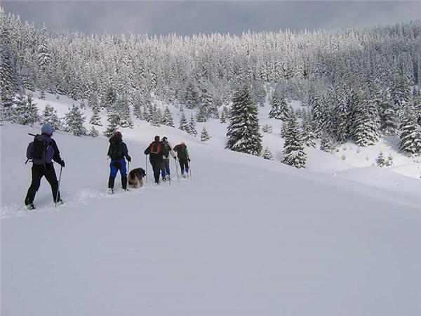 Winter walking and snowshoeing holiday in Bulgaria