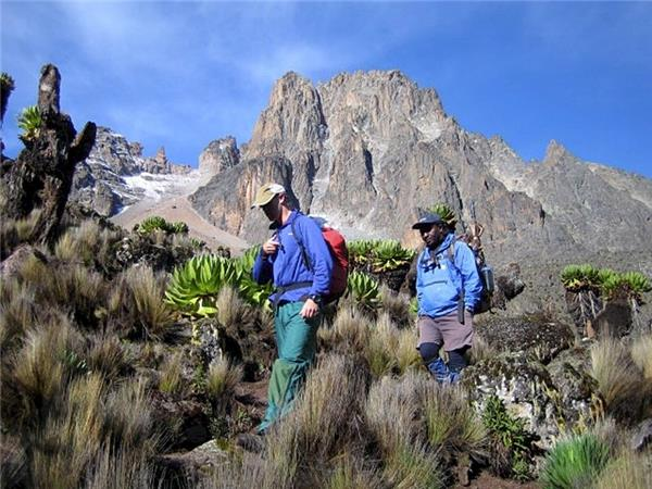 Mt Kenya climbing holiday, Kenya