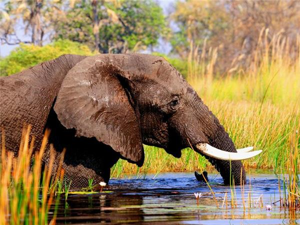 East African budget overland tour