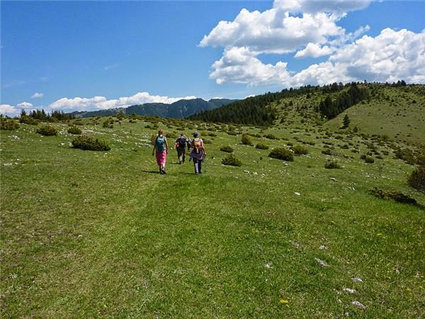 Rodopi Mountains walking holiday in Bulgaria