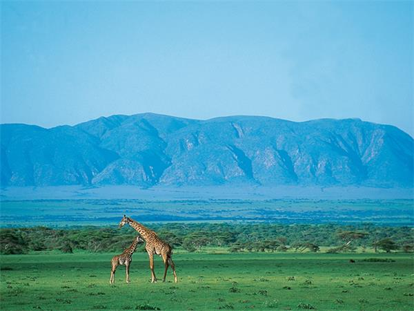Tanzania safari holiday
