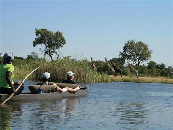 Botswana and Zimbabwe lodge safari