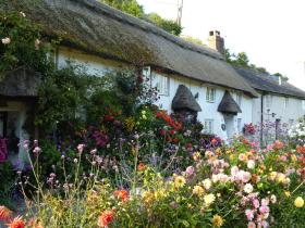 Branscombe Cottages