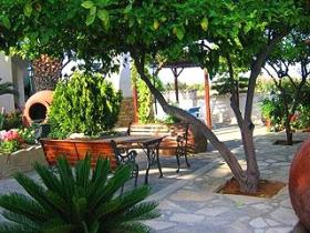 A lovely quiet sitting area under a lemon tree in the Villa Mosaica garden