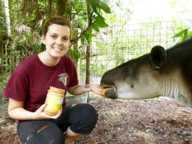 Volunteer with a tapir