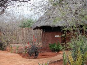 Camp Tsavo Banda Accomodation