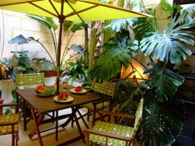 The inviting courtyard under the banana tree