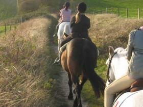 Horse riding hacks & day tours, South Downs, England