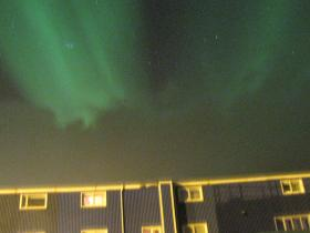 Northern Lights and whale watching holiday in Iceland