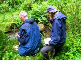 Volunteer in conservation and environmental research projects in Bwindi southwest Uganda