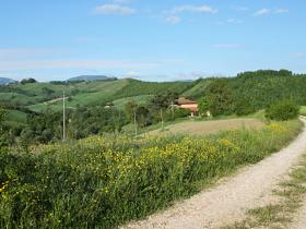 Casina dei Tordi and Casina Nuova are inmersed in the beautiful Le Marche hills