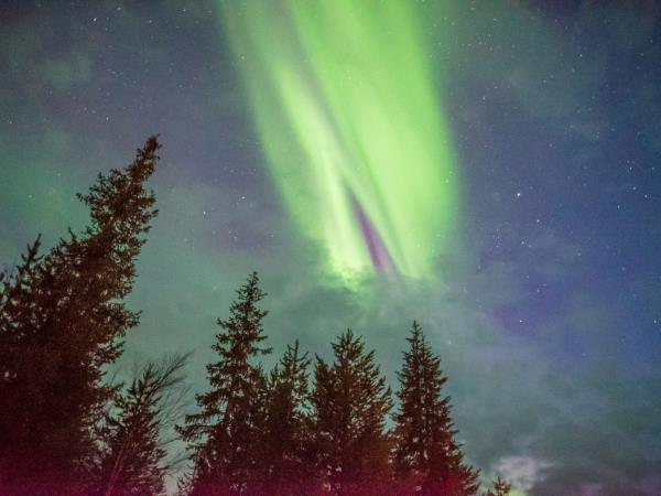 Lapland New Year holiday, Northern Lights