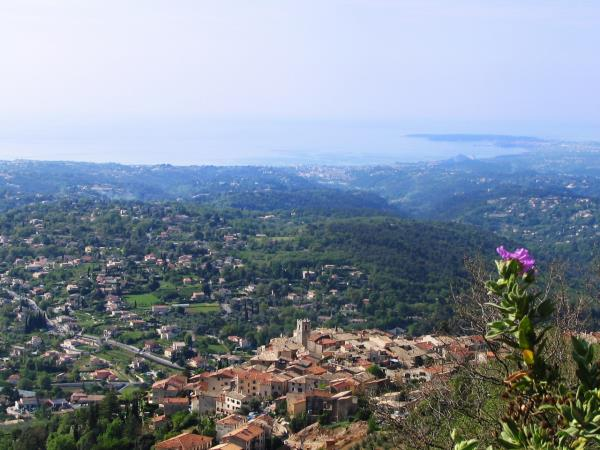 Provence holiday, with morning yoga