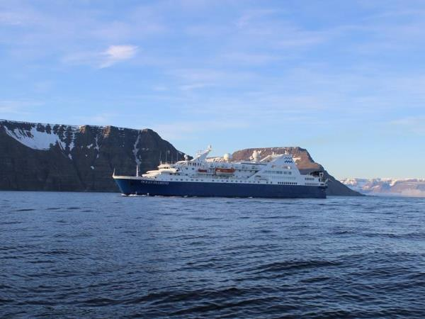 Northern lights and whales watching cruise in Iceland