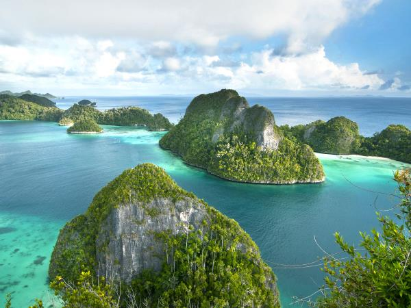 Raja Ampat diving project, Indonesia