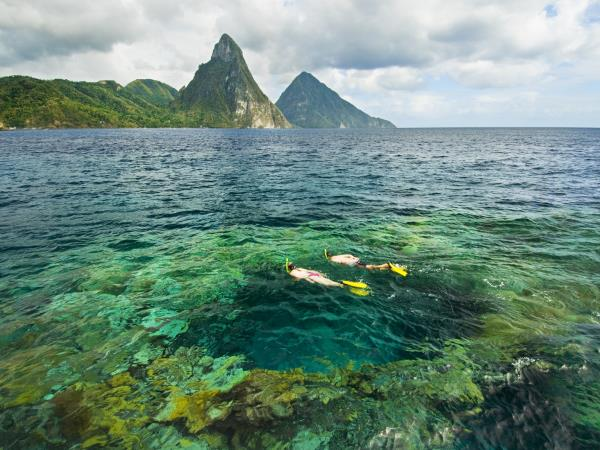 Caribbean nature tour, Lesser Antilles