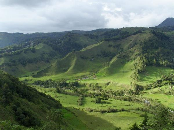 Colombia bird watching, nature & culture tour