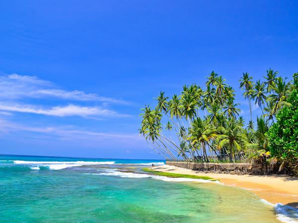 Sri Lanka wildlife tour, 10 days