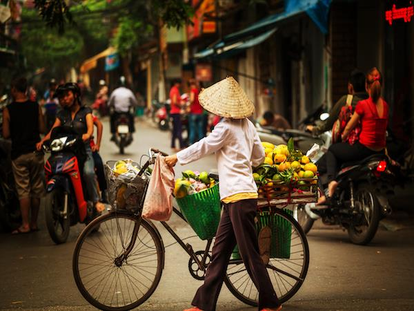 Vietnam luxury small group tour, culture & nature