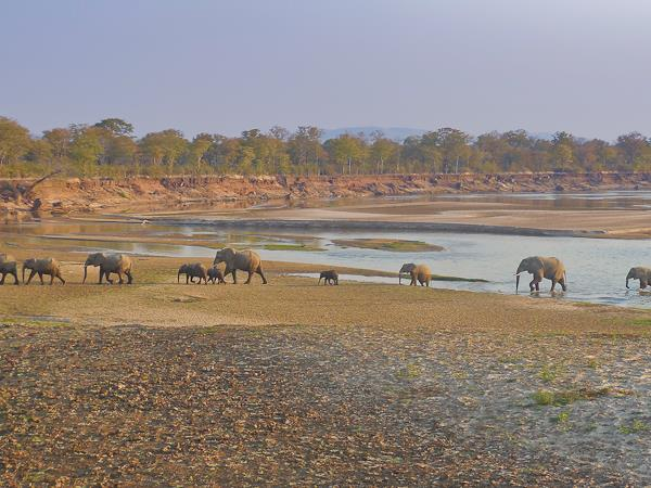 Northern Zambia Luangwa expedition
