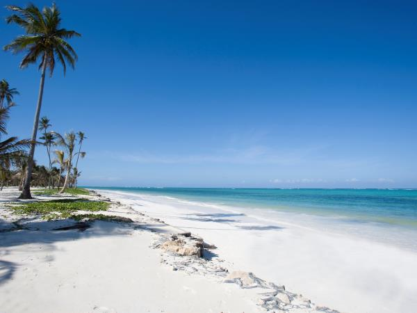 Luxury Tanzania safari and Zanzibar beach holiday