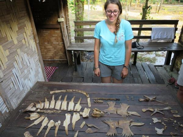 Turtle conservation volunteering in Thailand