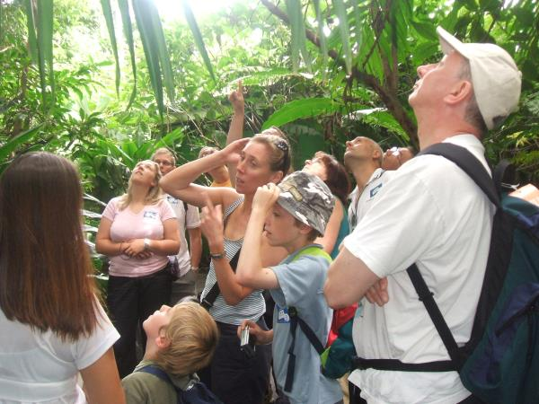Costa Rica family holiday, rainforests and volcanoes