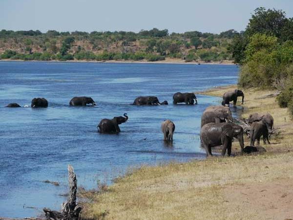 Botswana luxury tailor made holiday
