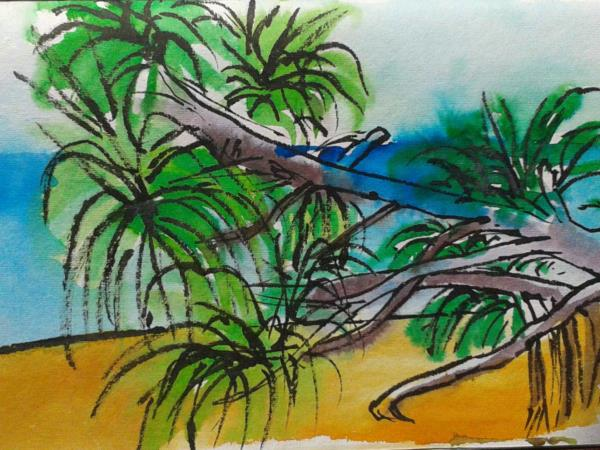 Painting holiday in Sri Lanka, 10 days