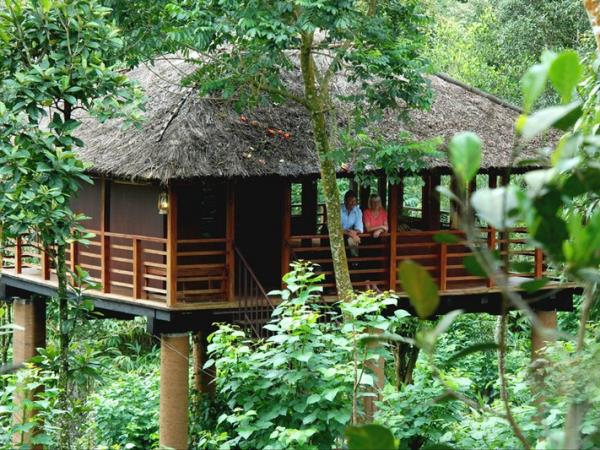Kerala tailor made holiday, 11 days