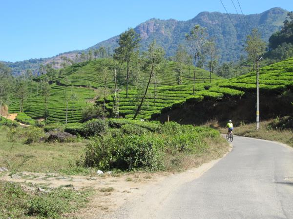 Backroads cycling holiday in Kerala, India