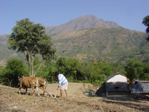North India holiday, mountains and hidden villages