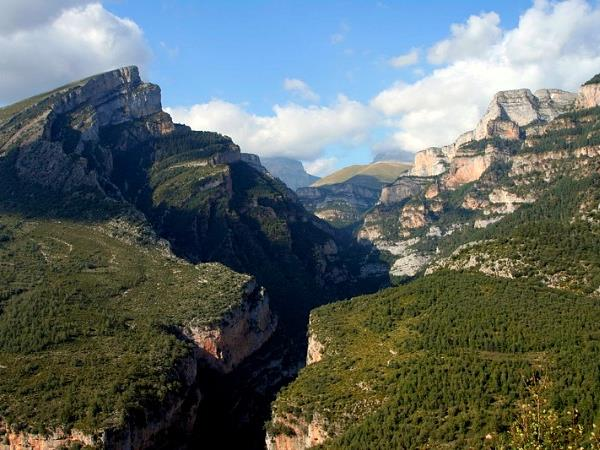 Wildlife and walking holiday in the Spanish Pyrenees