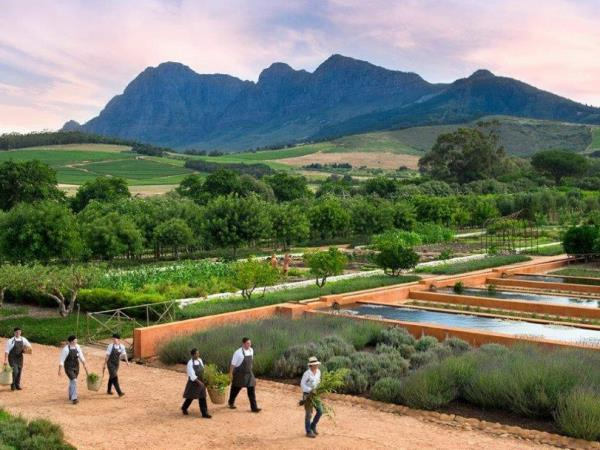 Gardens of South Africa tour