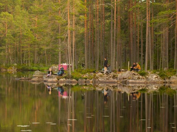 Sweden holidays, Wolves, Moose and Beavers