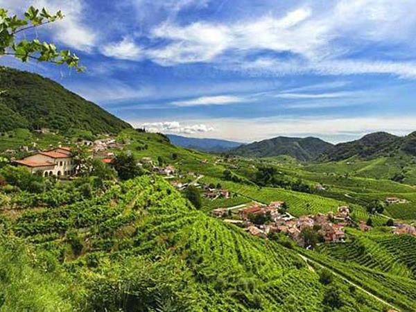 Prosecco Hills walking holiday, Italy