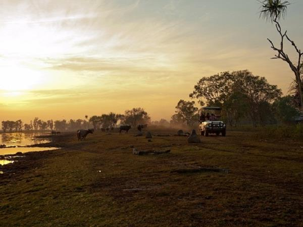 Northern Territory wilderness accommodation