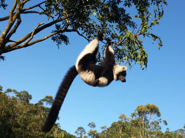 Madagascar off the beaten track holiday